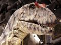 nhmerdzeitsaurier